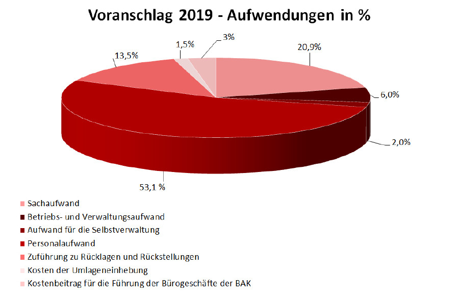 Voranschlag 2019 © AK