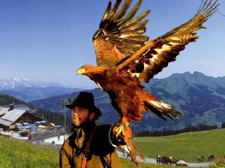 Mann mit Steinadler am Arm © Rauriser Hochalmbahn, AK Salzburg
